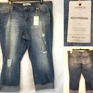 Torrid Boyfriend Destructed Distressed Cuffed Jean